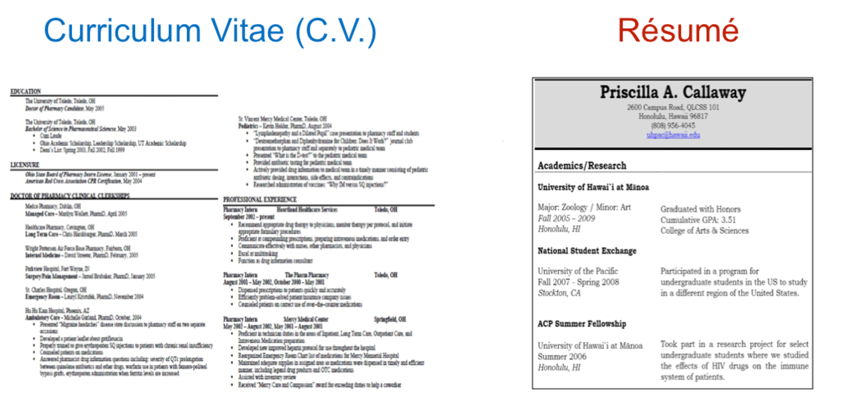 What\'s the Difference Between Resume and CV | Resume Templates for Mac